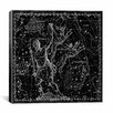 iCanvas Celestial Atlas - Plate 7 (Canes Venatici) by Alexander Jamieson Graphic Art on Canvas in Black