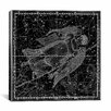 iCanvas Celestial Atlas - Plate 18 (Virgo) by Alexander Jamieson Graphic Art on Canvas in Black