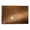 iCanvas 'Wild Moon ll' by Dan Ballard Photographic Print Photographic Print on Canvas