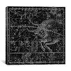 iCanvas Celestial Atlas - Plate 14 (Taurus) by Alexander Jamieson Graphic Art on Canvas in Black