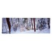 iCanvasArt Panoramic Winter Footbridge Cleveland Metro Parks, Cleveland OH Photographic Print on Canvas
