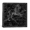 iCanvasArt Celestial Atlas - Plate 17 (Leo) by Alexander Jamieson Graphic Art on Canvas in Black