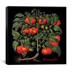 "iCanvas ""Tomates"" Canvas Wall Art by Mindy Sommers"