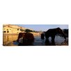 iCanvas Panoramic Three Elephants in the River, Amber Fort, Jaipur, Rajasthan, India Photographic Print on Canvas