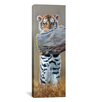 "iCanvasArt ""Tiger Cub Standing up"" Panoramic Canvas Wall by Pip McGarry"
