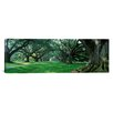 iCanvas Panoramic Louisiana, New Orleans, Oak Alley Plantation, Plantation Home through Alley of Oak Trees Photographic Print on Canvas