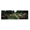 iCanvas Panoramic 'International Rose Test Garden, Washington Park, Portland, Oregon' Photographic Print on Canvas