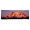 iCanvas Panoramic Washington, Mount Rainier National Park Photographic Print on Canvas
