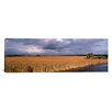 iCanvasArt Panoramic 'Florida, Big Cypress National Preserve along Tamiami Trail Everglades National Park' Photographic Print on Canvas