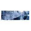 iCanvas Panoramic 'Snow Covered Trees along a River, Yosemite National Park, California' Photographic Print on Canvas