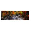iCanvasArt Panoramic Panoramic Stream with Trees in a Forest in Autumn, Nova Scotia, Canada Photographic Print on Canvas