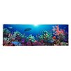 iCanvasArt Panoramic School of Fish Swimming Near a Reef, Indo-Pacific Ocean Photographic Print on Canvas