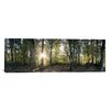 iCanvasArt Panoramic Trees in a Forest, Black Forest, Freiburg im Breisgau, Baden-Wurttemberg, Germany Photographic Print on Canvas