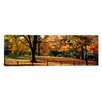 iCanvasArt Panoramic Trees in a Forest, Central Park, Manhattan, New York City, New York Photographic Print on Canvas