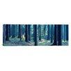iCanvas Panoramic Trees in a Forest, South Bohemia, Czech Republic  Photographic Print on Canvas