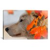 iCanvas 'Wolf Profile Autumn Leaves' by Gordon Semmens Photographic Print on Canvas