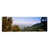 iCanvas Panoramic Trees on a Hill, Sausalito, San Francisco Bay, Marin County, California Photographic Print on Canvas