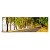 iCanvas Panoramic Trees on Both Sides of a Road, Lake Washington Boulevard, Seattle, Washington State Photographic Print on Canvas