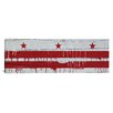 iCanvas Washington, D.C Flag, Wood Planks with Paint Drip Panoramic Graphic Art on Canvas