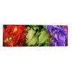 <strong>iCanvasArt</strong> Panoramic Tulip and Iris Flowers Photographic Print on Canvas