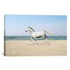 iCanvasArt 'White Horse on the Beach' by Bob Langrish Photographic Print on Canvas