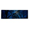 iCanvas Panoramic Silhouette of Oak Trees, Texas Photographic Print on Canvas