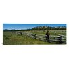 <strong>Panoramic Two Horses in a Field, Arizona Photographic Print on Canvas</strong> by iCanvasArt