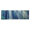 iCanvas Panoramic Sunlight passing through Panoramic Trees in the forest, South Bohemia, Czech Republic Photographic Print on Canvas
