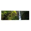 iCanvas Panoramic Multnomah Falls, Columbia River Gorge, Portland, Oregon Photographic Print on Canvas