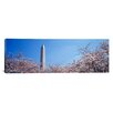 iCanvas Panoramic Washington Monument Behind Cherry Blossom Trees, Washington, D.C Photographic Print