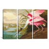 iCanvasArt John James Audubon Roseate Spoonbill 3 Piece on Canvas Set
