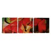iCanvas Franz Marc The Fox 3 Piece on Canvas Set