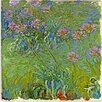"""Agapanthus Flowers"" Canvas Wall Art by Claude Monet"