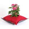 Greenbo Rail Planters Fiorina Flowers Pillow Box