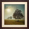 <strong>'It's a New Day' by Assaf Frank Framed Photographic Print</strong> by North American Art