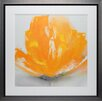 <strong>North American Art</strong> 'Wild Orange Sherbet II' by J.P. Prior Framed Painting Print