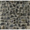 Bedrosians Hemisphere Random Sized Pebble Stone Polished Mosaic Tile in Panther Black