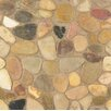 Bedrosians Hemisphere Random Sized Sliced Pebble Stone Polished Mosaic Tile in Kona Sands