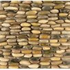 Bedrosians Hemisphere Stacked Pebble Random Sized Stone Polished Mosaic in Kona Sands