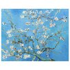 Epic Art 'Almond Blossoms' by Vincent Van Gogh Painting Print on Canvas