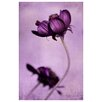 <strong>Epic Art</strong> 'Purple Blossoms' by Iris Lehnhardt Photographic Print on Canvas
