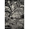 Epic Art 'Twelve Step Program' by Geoffrey Ansel Agrons Photographic Print on Canvas