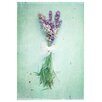 <strong>Epic Art</strong> 'Lavender' by Silvia Cook Photographic Print on Canvas