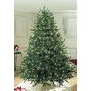 Queens of Christmas Pre-Lit Sequoia Tree with Pure White Lights