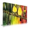 Maxwell Dickson Three Little Birds Graphic Art on Canvas