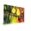 "Maxwell Dickson ""Three Little Birds"" Graphic Art on Canvas"
