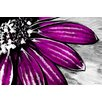 "Maxwell Dickson ""Purple Petals"" Painting Prints on Canvas"