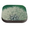 KESS InHouse Fuzzy Wishes by Angie Turner Coaster (Set of 4)