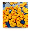KESS InHouse Duckies by Maynard Logan Photographic Print Plaque