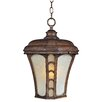 <strong>Maxim Lighting</strong> Lake Shore VX ES 1 Light Outdoor Hanging Lantern